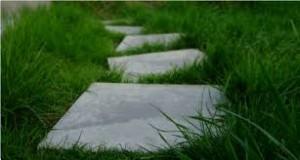 steppingstones